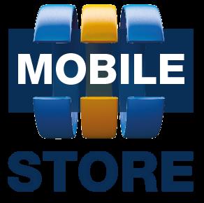 Codeware MOBILE STORE off-line, licence server + 1 klient